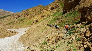 صعود تیم کوهنوردی مرکز قلب و عروق شهید رجایی به ارتفاعات زرد کوه بختیاری: عکس شماره 4 / 9